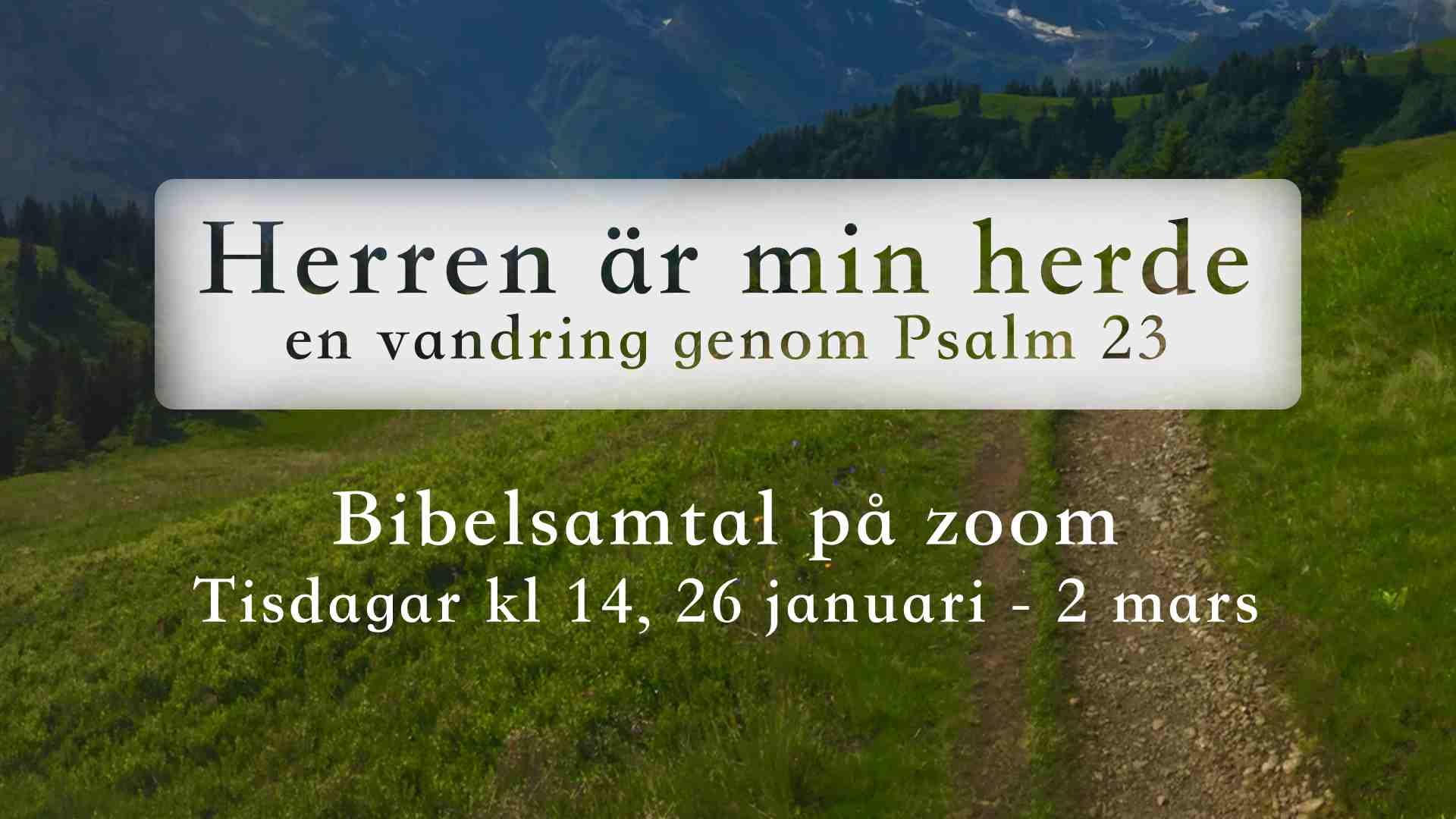 Bibelsamtal på zoom